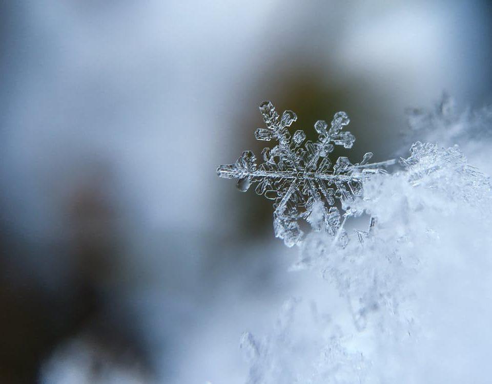 winter, storage, home, victoria