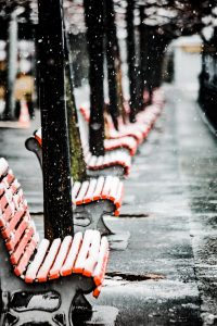 snow, bench, winter