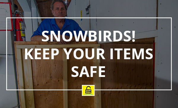 snowbirds, storage, cheap, mini units